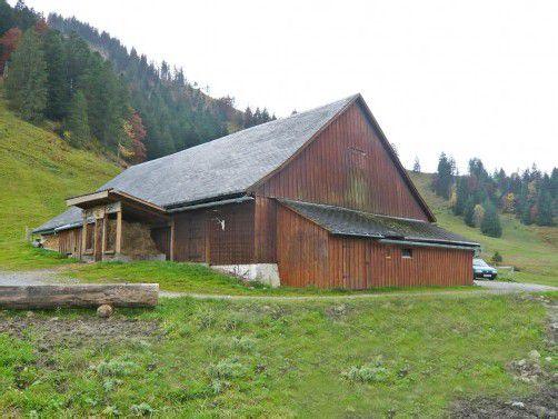 Auf der Alpe Sattel wird für 700.000 Euro ein neues Gebäude errichtet. Foto: ajk