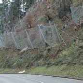 Installation von Schutznetzen im Klauser Wald