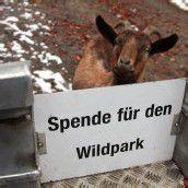 Wildpark rüstet sich fürs Jubiläum