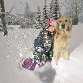 Der richtige Umgang mit Hunden im Winter