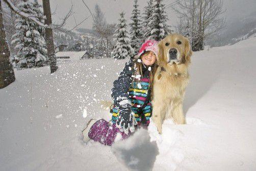 Hunde kommen gewöhnlich mit dem Schnee gut zurecht. Foto: Vn/Hartinger