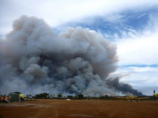 In den vergangenen Wochen mussten knapp 400 Buschfeuer bekämpft werden. Foto: EPA