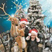 VN-Foto-Wettbewerb: Weihnachten im Fokus
