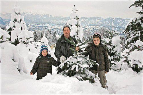 Raphael und Sebastian sind mit ihrem Opa, Erwin Kaufmann, gerne bei den Christbäumen. Foto: VN/Hartinger