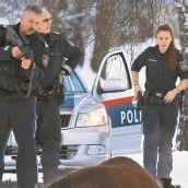 Verfolgungsjagd Polizei erschoss Rindvieh /b1