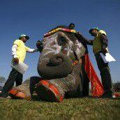 Wettbewerb für Elefantenin Nepal