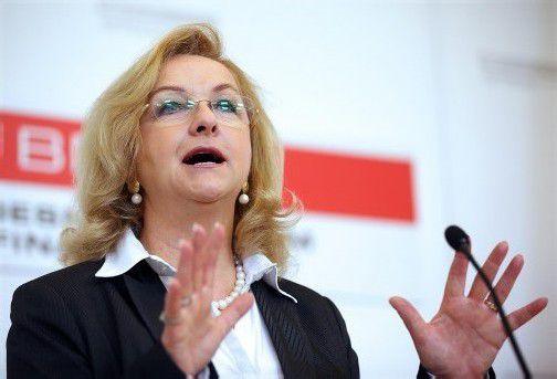 Finanzministerin Maria Fekter will noch vor der Nationalratswahl eine Steuerreform. Foto: apa