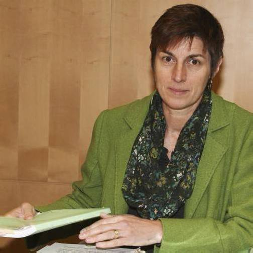 Salzburger Finanzskandal: Astrid Rössler (Grüne) untersucht. Foto: apa