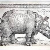 Rekordsumme für Dürers Rhinozeros
