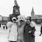 Mit dem Eisbär im Arm von Bregenz nach Lindau