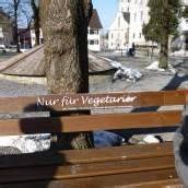 Parkbänke nur für Teetrinker in Hohenems