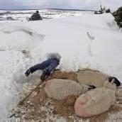 Großbritannien: Winter lässt nicht locker