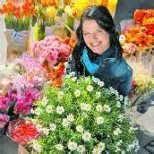 Bunte Frühlingsblumen zum halben Preis