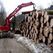 Sperren wegen Holzarbeiten