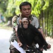 Tierische Ausfahrt