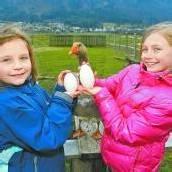 Nora und Naomi sind stolz auf ihr Gänseei