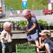 Innenstadt von Feldkirch wird Gemüsegarten