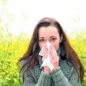 Mit der Wärme kommt auch die Pollenplage