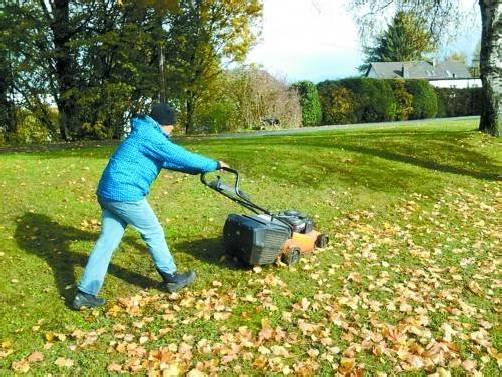 Das Rasenmähen gehört zu den uneingeschränkten Lieblingsbeschäftigungen von Christopher. Foto: autistenhilfe