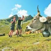 High Noon auf den Alpen: Bauern kämpfen um Geld
