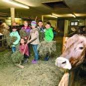 Wo die Milch herkommt