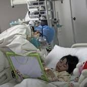 Vogelgrippe weitet sich nach Taiwan aus