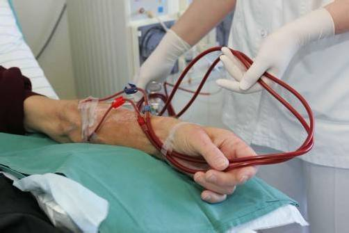 In Vorarlberg warten 47 Dialysepatienten auf eine Nierentransplantation.