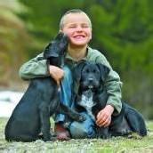 Ein neues Zuhause für den süßen Hundenachwuchs