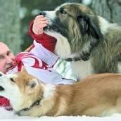 Putin gibt sich als Tierfreund