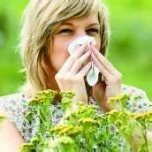 Pollenplage Allergikern blüht bald etwas /A8