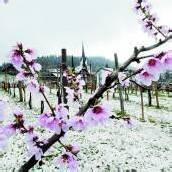 Winterwetter hat endgültig ausgedient: Diese Woche kehren Sonne und frühsommerliche Temperaturen zurück