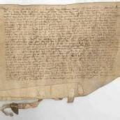 Walser als friedliche Eroberer der Alpen ab dem Jahr 1313