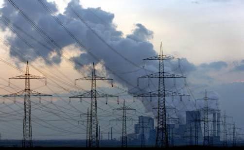 Wenn die Zunahme der Emissionen bis 2030 gestoppt werde, falle der Verlust von Lebensräumen immerhin um 40 Prozent geringer aus als in der Studie prognostiziert. Foto: DPA