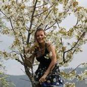 Kirschblüte in Fraxern