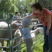 Schaf- und Handarbeitstag