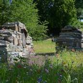 Ein neuer Garten für die heimische Insektenwelt