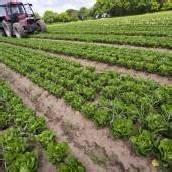 Weltweite Landnutzung wird immer intensiver
