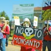 Monsanto zieht sich aus Europa zurück?