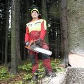 Nur ein gesunder Wald schützt vor Hochwasser