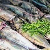 Frisches Essen aus dem Meer