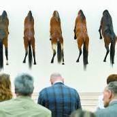Cattelans Pferde bei Beyeler