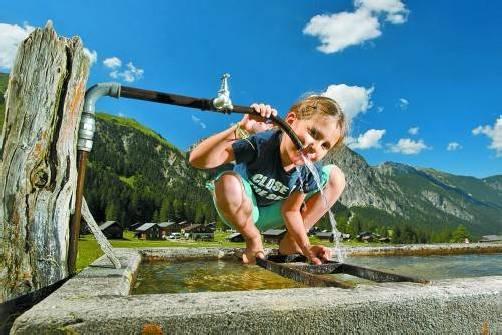 Wasserversorgung: Privatisierungen bleiben auch nach Verankerung einer Schutzbestimmung in der Verfassung möglich. Foto: VN/Berchtold