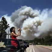 Flucht vor Waldbrand