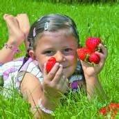 Hurra, die Erdbeersaison ist eröffnet