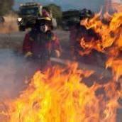 Festnahme nach Waldbränden