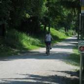 Diskussion um Gefahren durch Radler in Lustenau