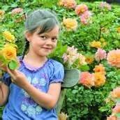 Die kleine Hannah inmitten von Rosen