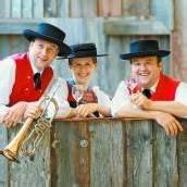 Bürgermusik Au lädt zum fulminanten Bezirksmusikfest