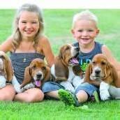 Hundstage der liebenswerten Art