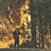 Wind facht Flammen im Yosemite-Park weiter an